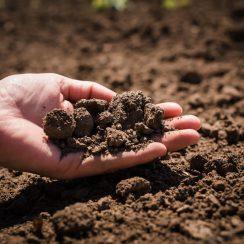 Safe bearing capacity of soil
