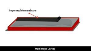 Membrane Curing