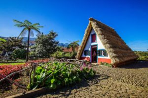 Thatch as a Building Material